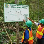 Forest workers discuss operations in a forest management area in the Peruvian Amazon, Ucayali, Peru. Photo: P. Recavarren/AIDER